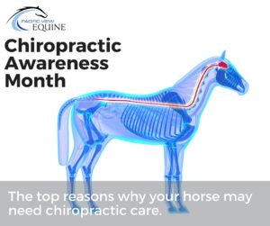 Chiropractic Awareness month